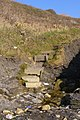 Steps up the cliff at the western end of Kimmeridge Bay - geograph.org.uk - 695240.jpg