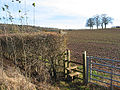 Stile and footpath leading south from Ledbury - geograph.org.uk - 655808.jpg