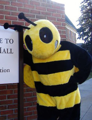 "Baldwin Wallace Yellow Jackets - BW's mascot ""Stinger"""