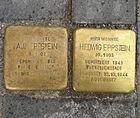 Stolpersteine in Mannheim, Collinistr.jpg