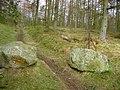 Stone sentinels - geograph.org.uk - 675418.jpg