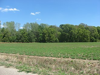 Lamotte Township, Crawford County, Illinois - The Stoner Site, an important archaeological site in the township