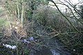 Stream flowing out of Bradbourne Lakes - geograph.org.uk - 1720119.jpg