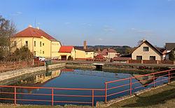Studnice, common pond.jpg