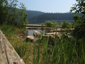 Summer Afternoon at the Edge of Cameron Lake, in Trepanier Park.png