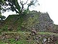 Sumoto Castle 10.jpg