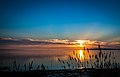 Sunset Reeds, North Shore Port Lincoln - South Australia.jpg