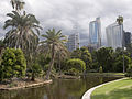 Sydney botanic garden - panoramio - Maksym Kozlenko.jpg