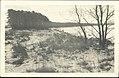TLA 1465 1 6497 Vaade Meriväljalt Pirita rannale 1930ndad.jpg