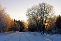 Talvine loojang Sonda lähedal.jpg