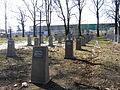 Tarnow chyszow cmentarz kolb7240.JPG