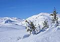 Telemark once again (2380388983).jpg