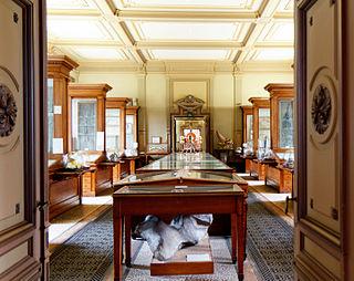 Teylers Fossil Room II