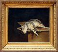 Théodore géricault, il gatto morto, 1820 ca.jpg