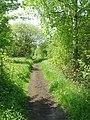 The Bubwith Rail Trail - geograph.org.uk - 807462.jpg