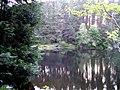 The Loch at Millbuies - geograph.org.uk - 1346624.jpg