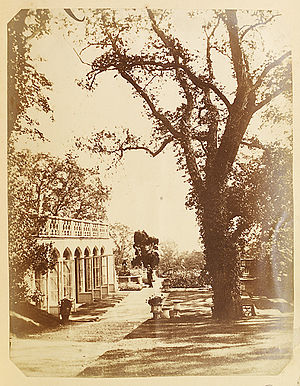 Margam Country Park - The Orangery, Margam. Photographed in the 1850s