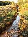 The copper polluted Afon Goch - geograph.org.uk - 1194641.jpg