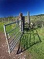 The open gate - geograph.org.uk - 993518.jpg
