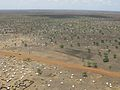 The scale of the problem Jamam refugee camp from the air (6972523516).jpg