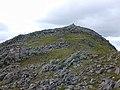 The summit of Stob Ghabhar - geograph.org.uk - 540171.jpg