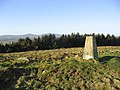 The trig point on Chattonpark Hill - geograph.org.uk - 327277.jpg