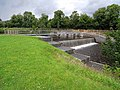 The weir at Ballyduff Lock - geograph.org.uk - 1405841.jpg