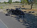 Tire dump near the Oregon Badlands Wilderness.jpg