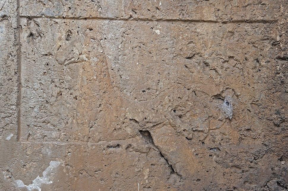 Tlos Bellerophon grave 5608