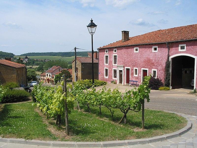 Torgny (Belgium), the pink farm.
