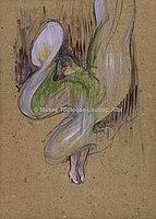 Toulouse-Lautrec - LA LOIE FULLER AUX FOLIES-BERGERE, 1893, MTL.152.jpg
