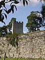 Tower at Greys Court - geograph.org.uk - 556705.jpg