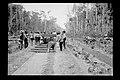Trabalhadores Executam Assentamento de Dormentes e Trilhos em Trecho da Ferrovia Madeira-Mamoré - 481, Acervo do Museu Paulista da USP.jpg