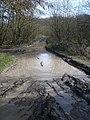 Track near Peacock Villa - geograph.org.uk - 906995.jpg