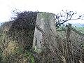 Triangulation Pillar at West House Field Farm - geograph.org.uk - 99313.jpg