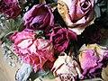 Trockenblumen.jpg