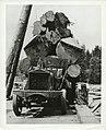 Truck loaded with logs (13584115934).jpg