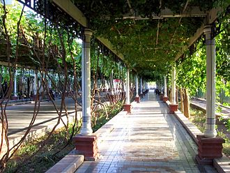 Turpan - Youth Road (QingNianLu), a Turpan street shaded by grapevine trellises
