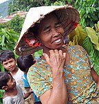 USAID supports livelihoods in central Vietnam through cocoa farming (5059391698).jpg