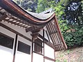 Ujigami Shrine National Treasure World heritage 国宝・世界遺産宇治上神社16.JPG