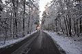 Ulica Dylewska na osiedlu Białołęka Dworska w zimie.jpg