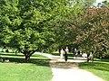 University Parks, Oxford, Summer 2006.jpg