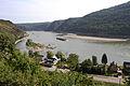 Untiefen des Rheins bei Oberwesel.jpg