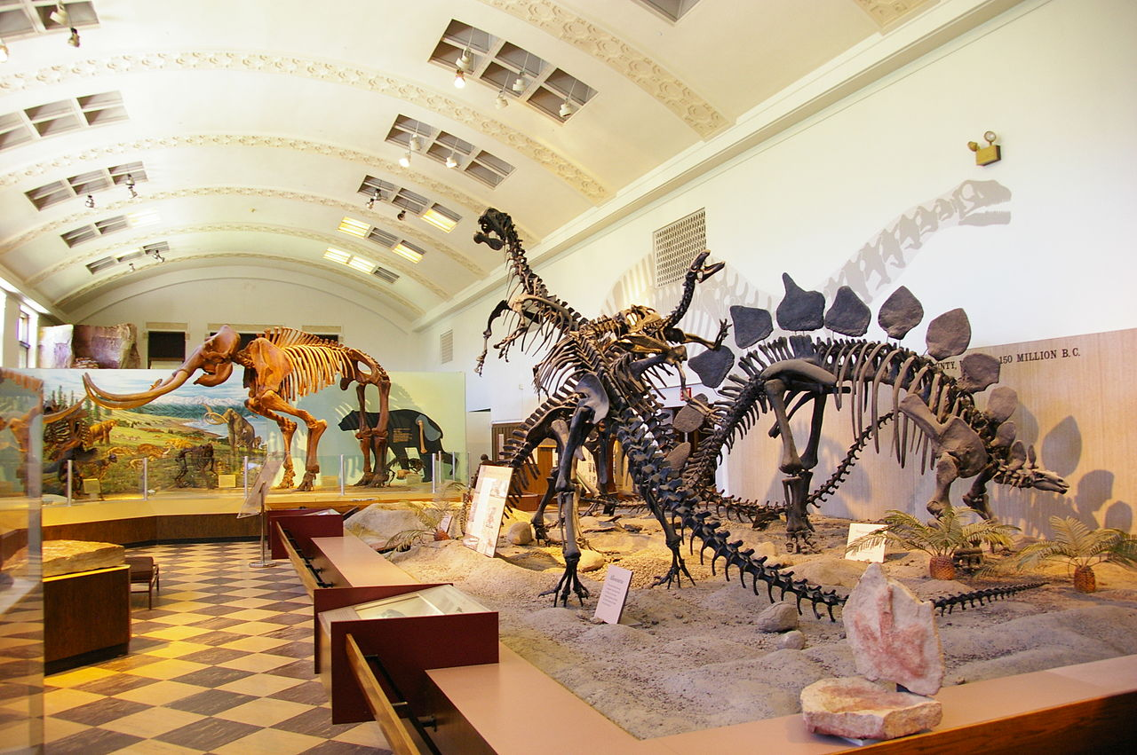Where Is The Natural History Museum Of Utah