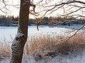 Västra Långängskärret januari 2009.JPG