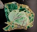 Varisite, Clay Canyon, Utah - Natural History Museum of Utah - DSC07453.JPG