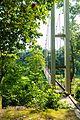 Vertical view.jpg