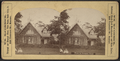 View in Prospect Park, from Robert N. Dennis collection of stereoscopic views 3.png