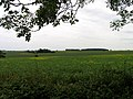 View towards Glatton Lodge - geograph.org.uk - 1800036.jpg