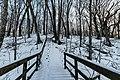 Viewpoint Steps - Frontenac State Park, Minnesota, in winter (40310883211).jpg